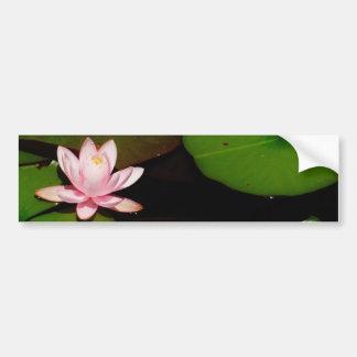 light  pink lotus water lily flower bumper sticker