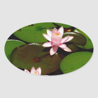 light pink lotus water lily flower stickers
