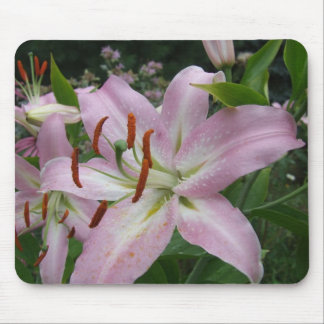 Light Pink Oriental Lily Lillies Floral Mouse Mat