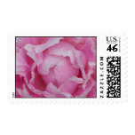 Light Pink Peony Postage Stamps