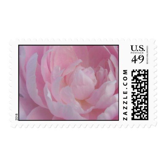 Light Pink Peony Wedding Postage Stamps Peonies
