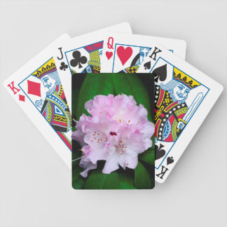 Light Pink Rhododendron Deck Of Cards