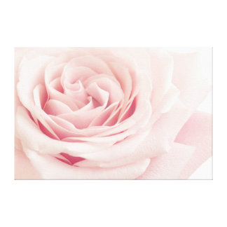 Light Pink Rose Flower - Roses Flowers Floral Gallery Wrap Canvas