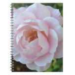Light Pink Rose Journal Notebook