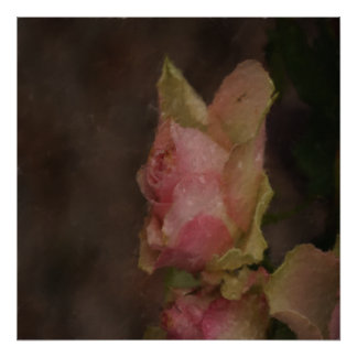 Light Pink Rose Oil Painting Poster