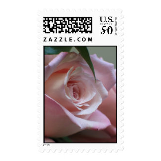Light Pink Rose Postage