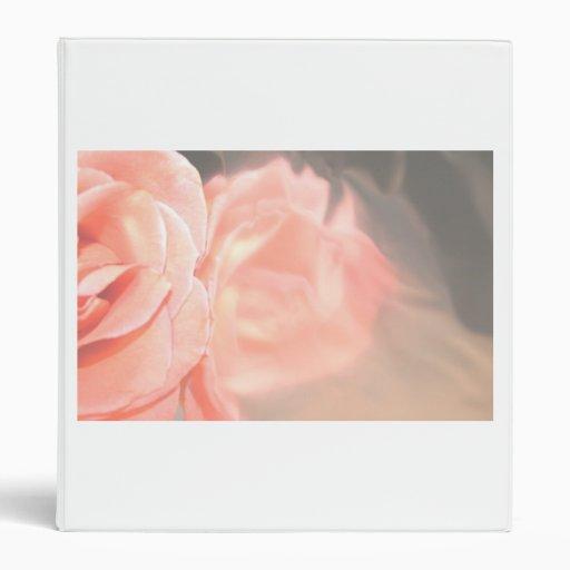 Light pink rose reflection in silver binder