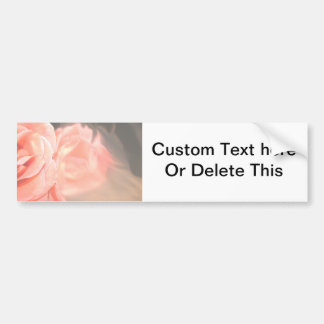 Light pink rose reflection in silver bumper stickers