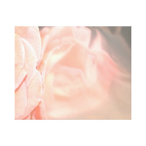 Light pink rose reflection in silver gallery wrap canvas