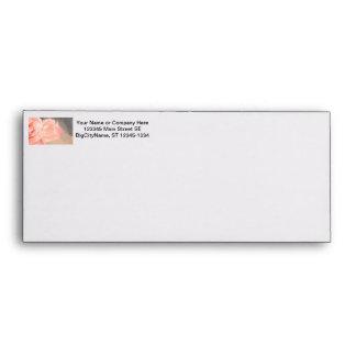 Light pink rose reflection in silver envelope