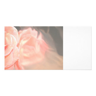 Light pink rose reflection in silver photo card