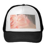 Light pink rose reflection in silver trucker hat