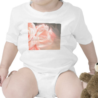 Light pink rose reflection in silver baby bodysuits