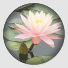 Light Pink Water Lily Fade to Black Round Stickers