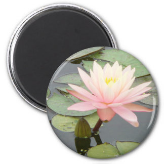 Light Pink Water Lily Round Magnet