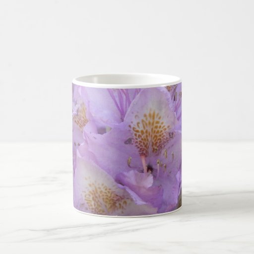 Light Plum Rhododendron in Spring Classic White Coffee Mug