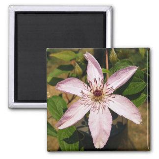 Light Purple Vine Flower Magnet