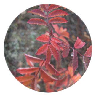 Light Red Leaves Plate