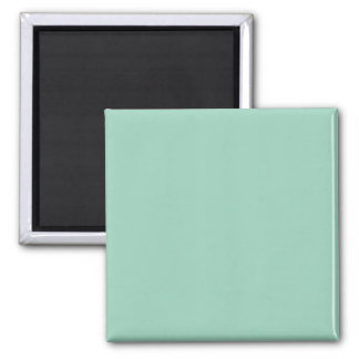 Light Seafoam Green Sea Foam Color Trend Template Fridge Magnet