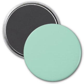 Light Seafoam Green Sea Foam Color Trend Template Refrigerator Magnet