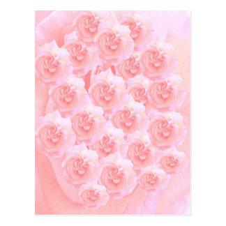 Light Shade Red Rose Bouquet Postcard