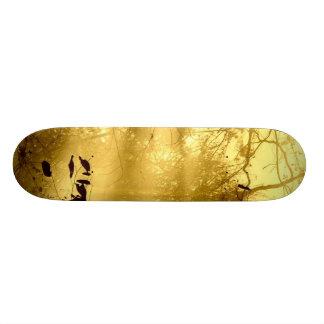 Light Shines Through Skateboard Deck