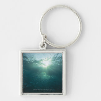 Light shining on coral reef and school of fish keychain