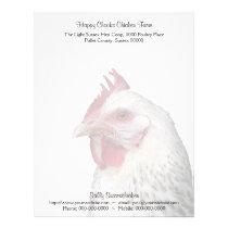 Light Sussex chicken portrait photo Letterhead