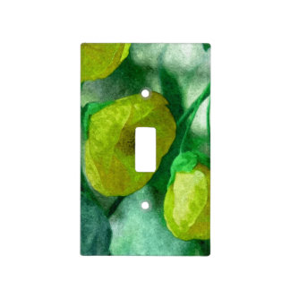 Light Switch Cover 001a