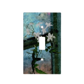 Light Switch Cover 003c