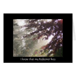 Light through plum tree sympathy card