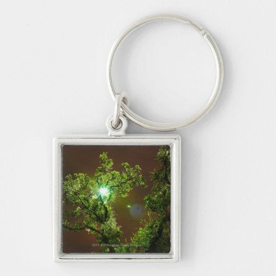 Light Through Trees at night Keychain
