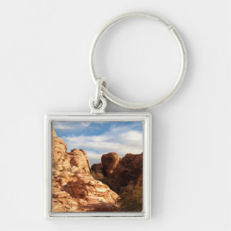 Light vs Shadow on Red Cliffs Keychain