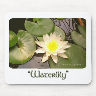 Light Water lily Mouse Pad