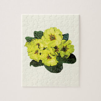Light Yellow Primroses Jigsaw Puzzle