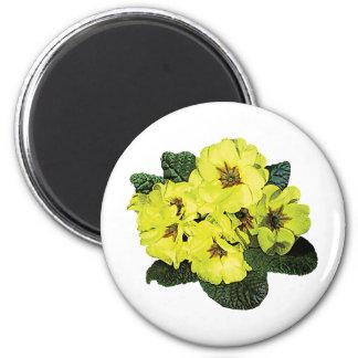 Light Yellow Primroses Magnet