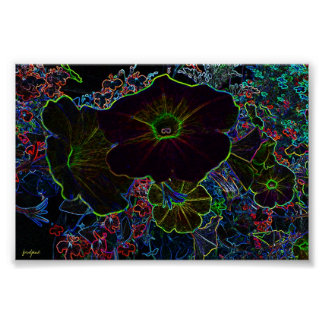 lighted flower posters