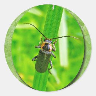 Lightening Bug Sticker