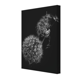Lighter Than Air Canvas Print