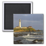 Lighthouse at Pigeon Point State Beach in San 2 2 Inch Square Magnet