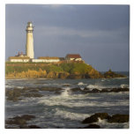 Lighthouse at Pigeon Point State Beach in San 2 Tile