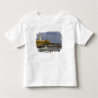 Lighthouse at Pigeon Point State Beach in San 2 Toddler T-shirt