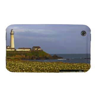 Lighthouse at Pigeon Point State Beach in San iPhone 3 Case-Mate Case
