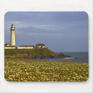 Lighthouse at Pigeon Point State Beach in San Mouse Pad