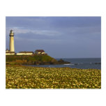 Lighthouse at Pigeon Point State Beach in San Postcard