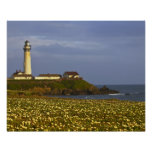 Lighthouse at Pigeon Point State Beach in San Poster