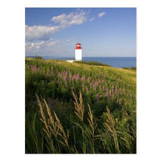 Lighthouse at St. Martins, New Brunswick, 2 Postcard