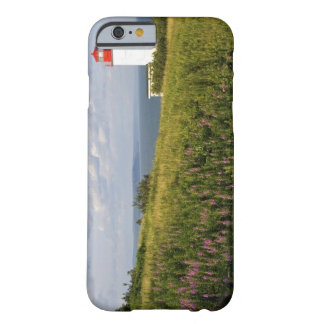 Lighthouse at St. Martins, New Brunswick, Barely There iPhone 6 Case