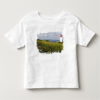 Lighthouse at St. Martins, New Brunswick, Toddler T-shirt
