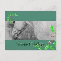 Lightly Dun Dapples (Christmas) Holiday Postcard